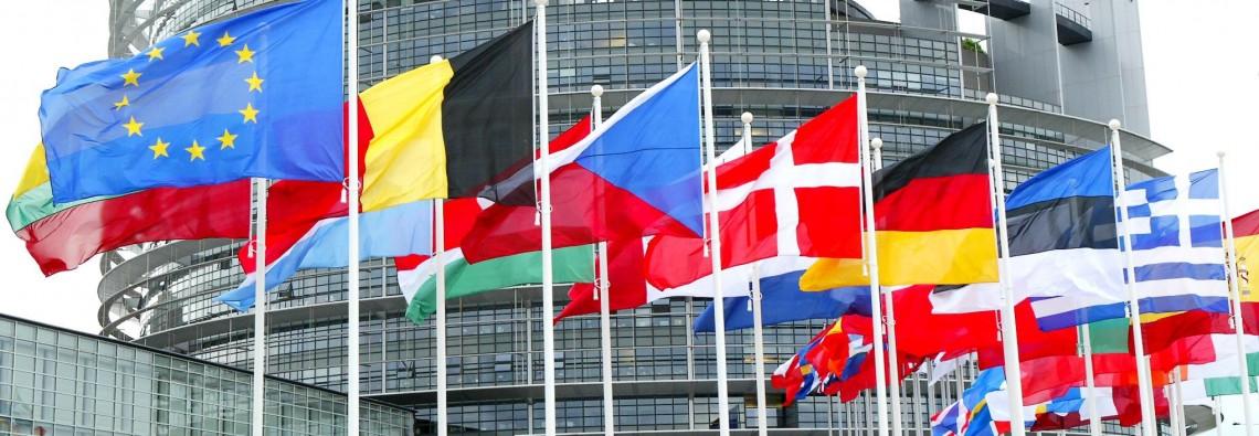 cos_e_l_ingiunzione_europea?